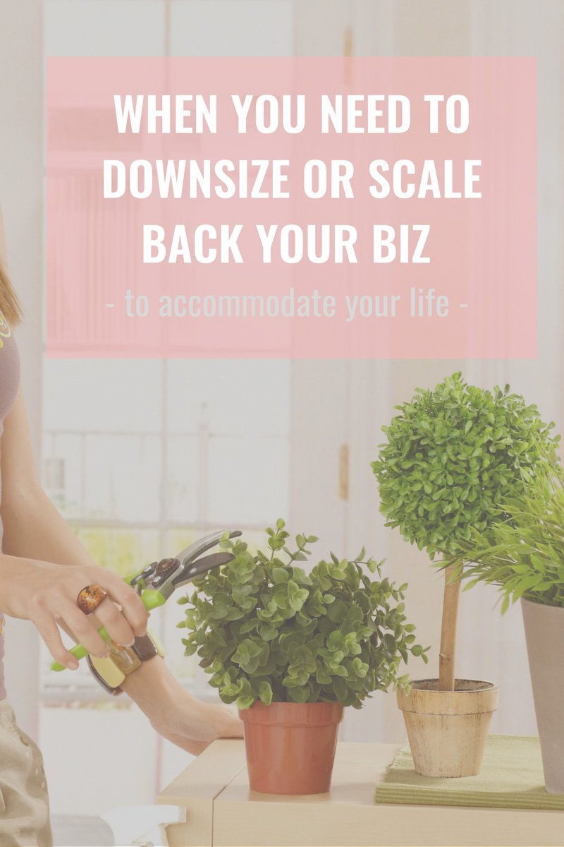 Erin Armstrong - Business Coach - Virtual CFO - Blog - When you Need to Downsize or Scale Back Your Business - To Accommodate Your Lifestyle