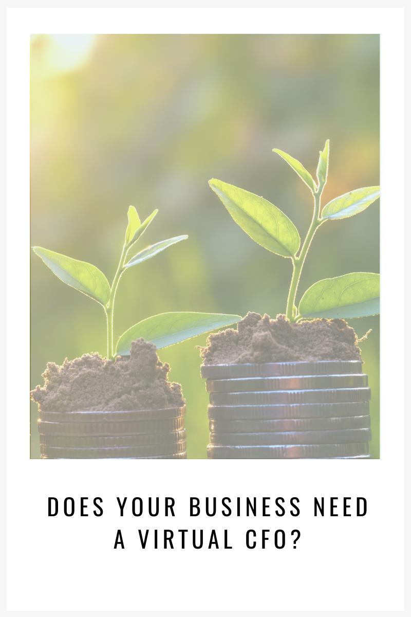 small-business-need-a-virtual-cfo-virtual-cfo-services